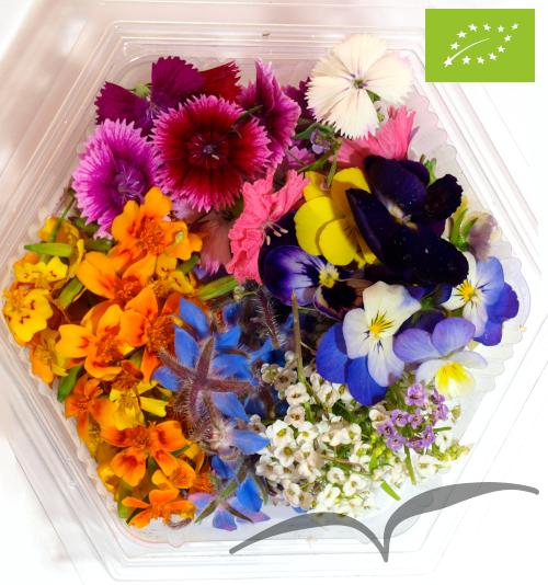 Mistura de Flores pequenas ±100 unidades